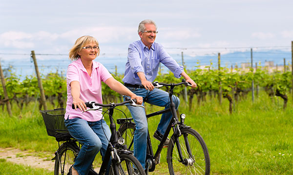 Pedal through Grand Cru Vineyardsthursday image