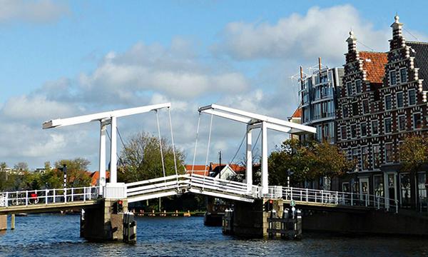 Elegance in Haarlemfriday image
